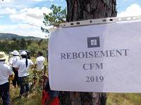 Le président, les membres du CFM ainsi que le personnel technique lors de la journée de reboisement (Vendredi 22 mars 2019 à Ambalavao, District d'Atsimondrano)
